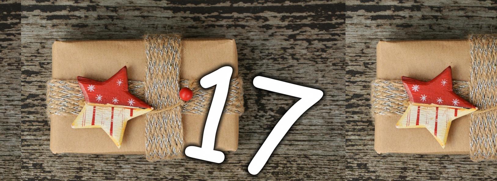 buchgeschenk-advent-17